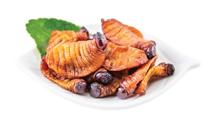 edible sago worms larvae pupae