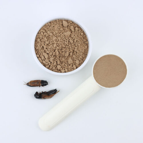 Black Cricket Powder