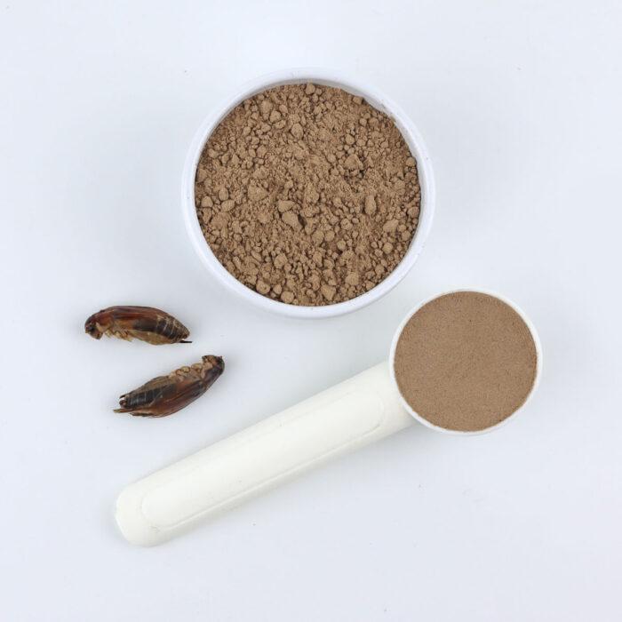 Jamaican cricket powder